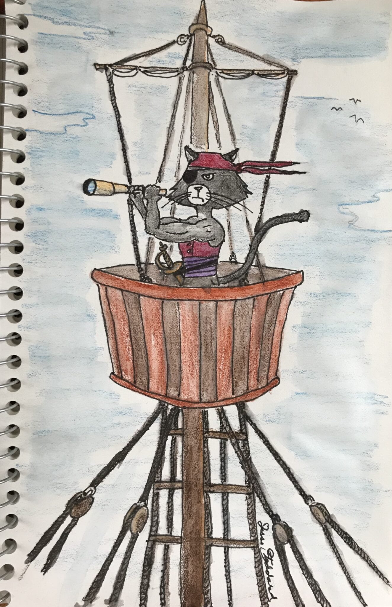 Albert the Cat Pirate